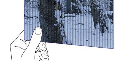 Eine stilisierte Hand hält ein Wackelbild mit vertikaler Linsenrichtung und Bewegt diese um die Hochachse. Das Wechselbild zeigt in einer Bildphase einen Waldausschnitt im Winter und in der nächsten Bildphase im Sommer.